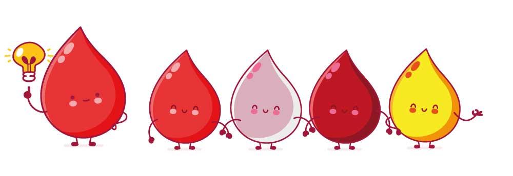 sangue-e-famiglia-avis-veneto