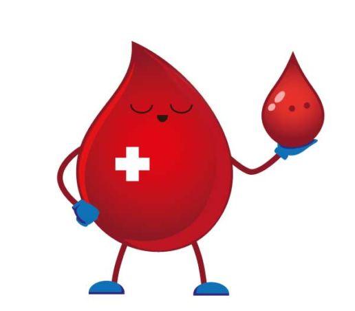 sangue-in-salute-avis-veneto